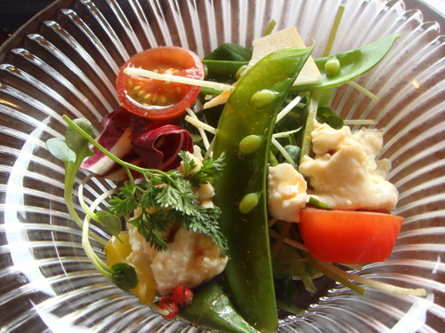 jud à Hiroshima - cuisine au tofu
