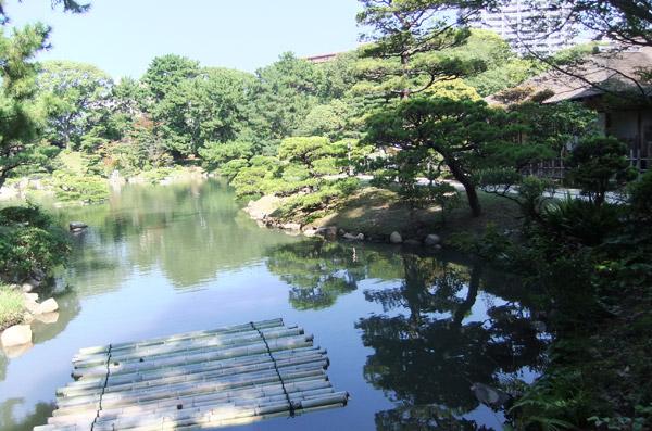 jud à Hiroshima - cérémonie du thé